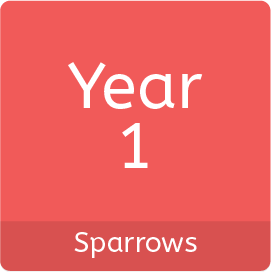 Year1_Sparrows