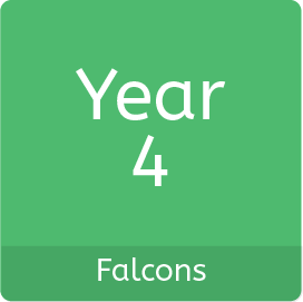 Year4_Falcons